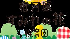すみれの花ロゴ7